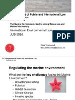 Q Maritimezoe