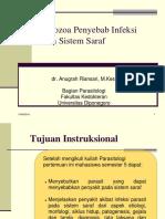 5.1 Sistem Syaraf (Toksoplasma) PARASITOLOGI