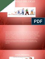 EXPOSICION DE DESARROLLO-DEL-CICLO-VITAL-1 CON SUS PRECURSORES.pptx