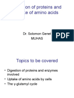 Digestion and Absorption Proteins and Amino Acids