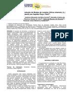 Substratos Para a Produção de Mudas de Laranja (Citrus Sinensis (L.) Osbeck) Em Capitão Poço, Pará.