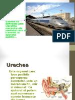 Poluarea Sonora BIOLOGIE