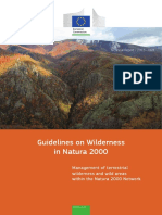Wilderness Guidelines