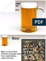 The Basic of Beer