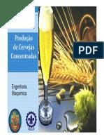 Produção de Cervejas Concentradas