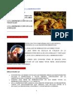 FUNCIONES VITALES III. LA REPRODUCCIÓN.pdf