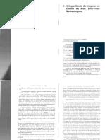 Ensino da Arte BARBOSA_A.pdf