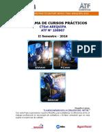 Programa Cursos Practicos Post Venta II Semestre