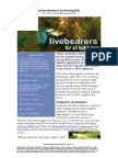 An Introduction to Livebearing Fish