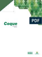 Coque-Informacoes-Tecnicas