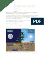 La Fotosíntesis Es Un Proceso Biológico Mediante El Cual Las Plantas Con Clorofila Captan La Energía Solar y Sintetizan Los Hidratos de Carbono a Partir Del CO2 y Del Agua