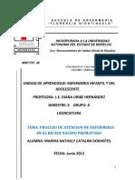 PAE_RECIEN_NACIDO_PREMATURO_Marina_Natha.pdf
