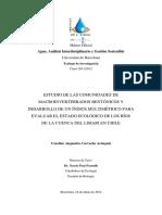 TESIS_MASTER_Caroline Carvacho.pdf