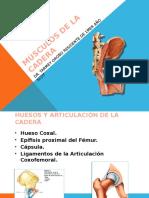 MÚSCULOS DE LA CADERA YARMEY.pptx