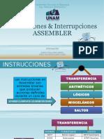 Instrucciones & Interrupciones