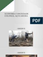 Economia e Sociedade Colonial Açucareira