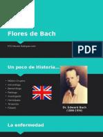Flores de Bach.pptx