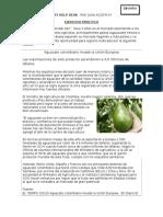 CASO_EXPORT_HELPDESK (2).docx