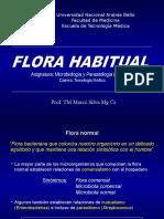 11 Flora Normal UNAB