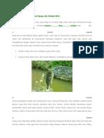 5 Umpan Ikan Mujair Alami Resep Jitu Terbaik 2016