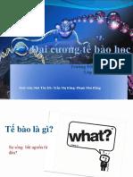 daicuongtb-140511224937-phpapp02