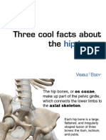 facts-about-hipbones 030515
