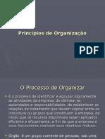 1 TA ModIV Principios de Organizacao