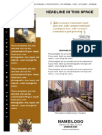 Flyer Professional a4