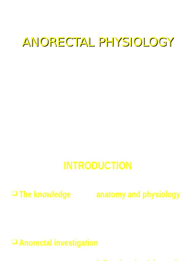 Fisilogi Anal Kanal Rectum Human Anatomy