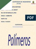 Polimeros GGM