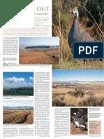 ABB06(2)48-52.pdf