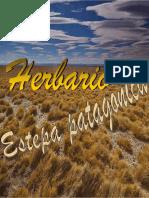Herbario Estepa Patag%c3%93nica-Phone