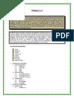 Modelo Practica 2 y 3