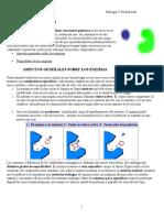 Enzimas(6).doc