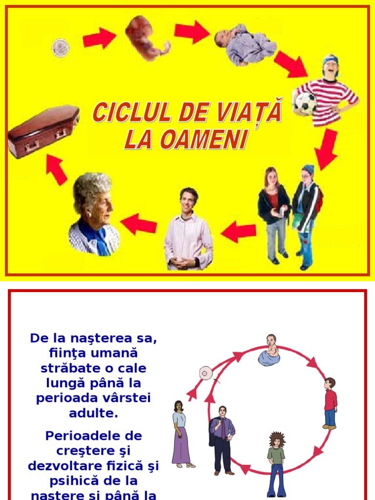 ciclul vieții giardiei la om)