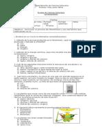 prueba fotosintesis 6.docx