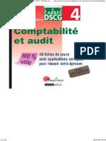 Carré DSCG 4 - Comptabilité Et audit