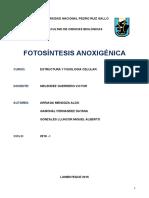 Fotosintesis Anoxigenica Monografia