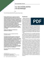 13111833_S300_es.pdf