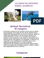 Mi Tema Es Sobre Los Animales Terrestre y acuaticos