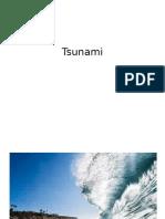 Tsunami pupils work