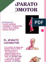 Diapo Neuro 1