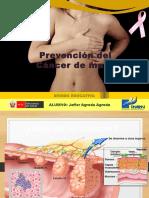 Rotafolio3 Prevencion Cancer de Mama (1)