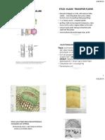 JURNAL_TRANSPORT_DALAM_FLOEM.pdf