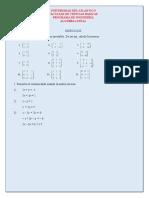 Ejercicios Inversa de Matrices