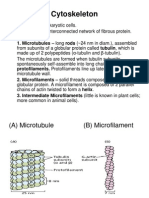 Cytoskeleton Plastids, Vacuoles