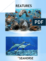Sea Creatures Power Point