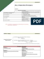 Agonistas y Antagonistas Adrenérgicos 1.pdf