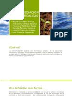 Biorremediación Con Microalgas