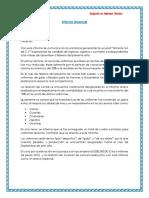 Informe Gerencial 1